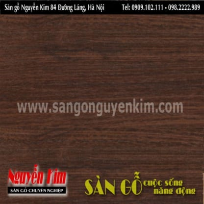 Sàn gỗ JANMI AC12; 12,0mm