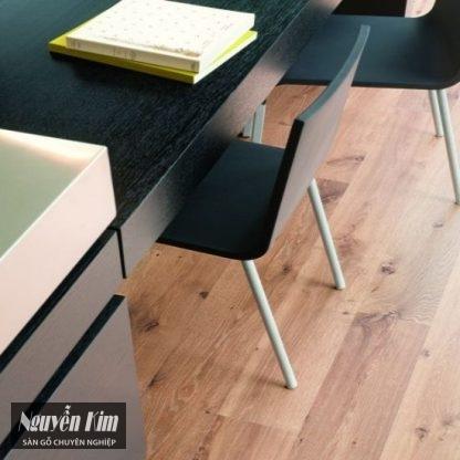 sàn gỗ quickstep u995 Bỉ