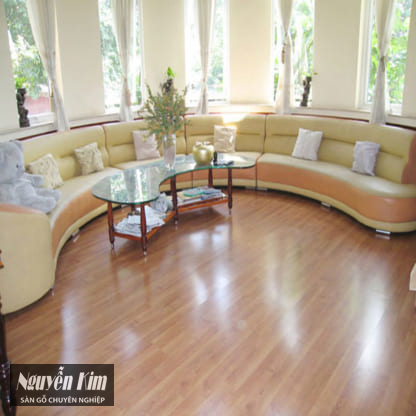 Sàn gỗ Ruby Floor 8009