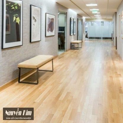 sàn gỗ sồi trắng đẹp
