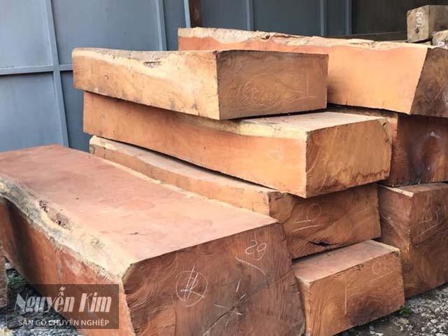 gỗ gõ đỏ có tốt không