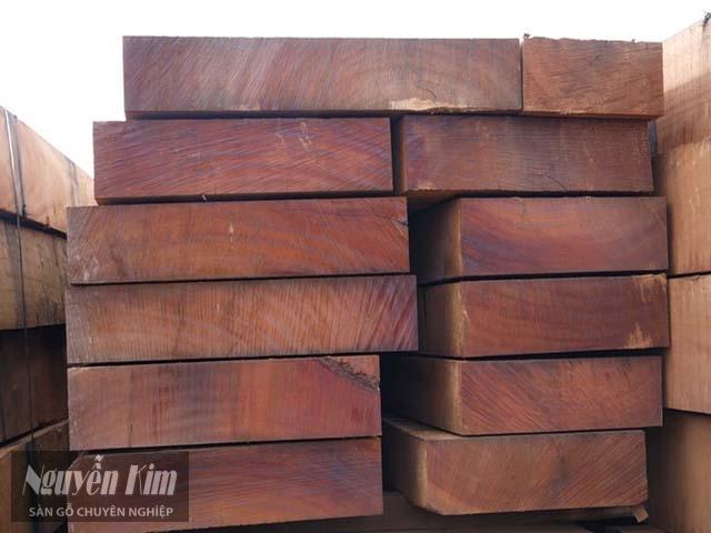 gỗ hương nam phi bao nhiêu tiền 1 khối