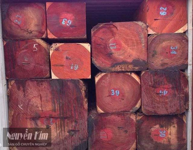gỗ hương nam phi có tốt không