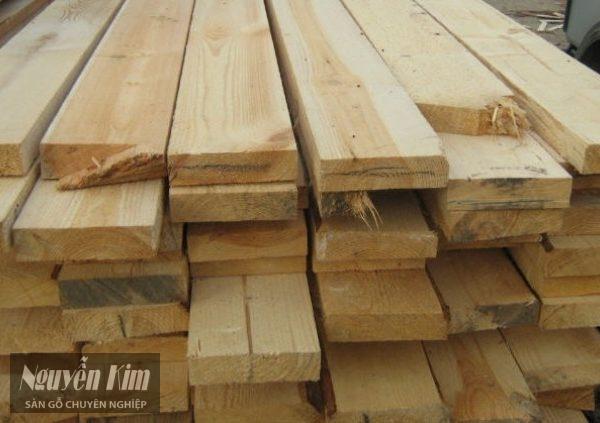 gỗ tràm bông vàng có tốt không