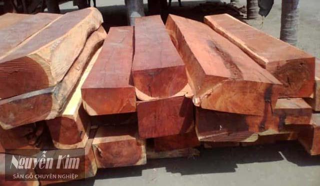 cách phân biệt gỗ hương nam phi với các loại gỗ khác