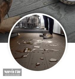 sàn gỗ đức alder chống nước