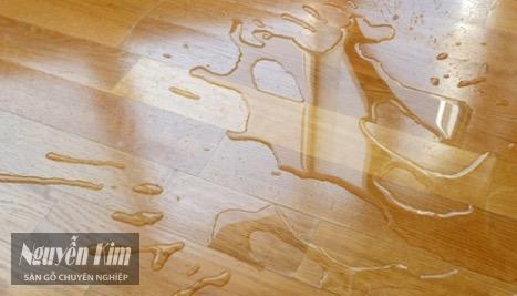 gỗ sồi có khả năng chống nước tốt