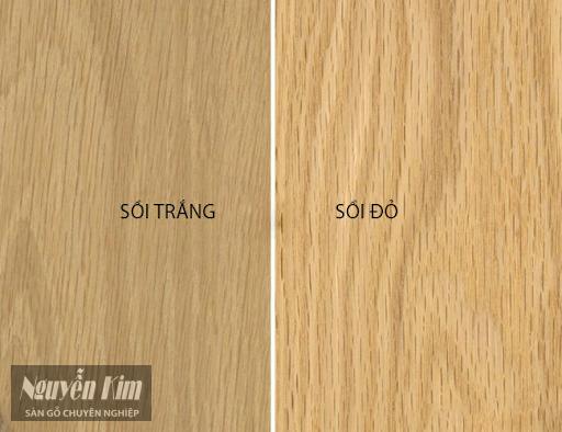 mua sàn gỗ sồi ở đâu chất lượng