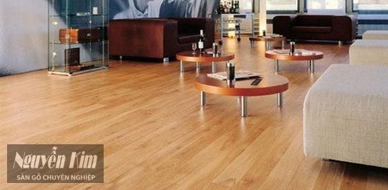 giới thiệu sàn gỗ meister